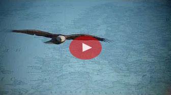 Moravian Eagles